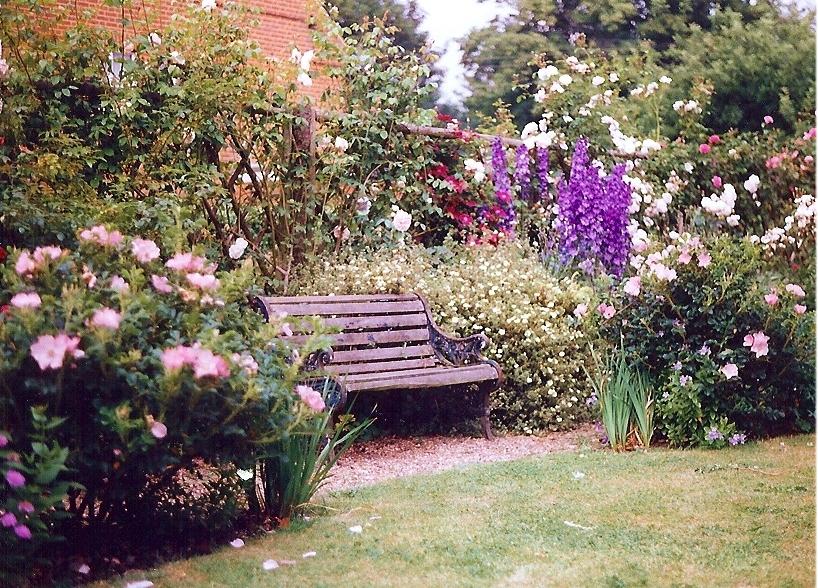 Thiết kế khu vườn cho mùa đông ấm áp