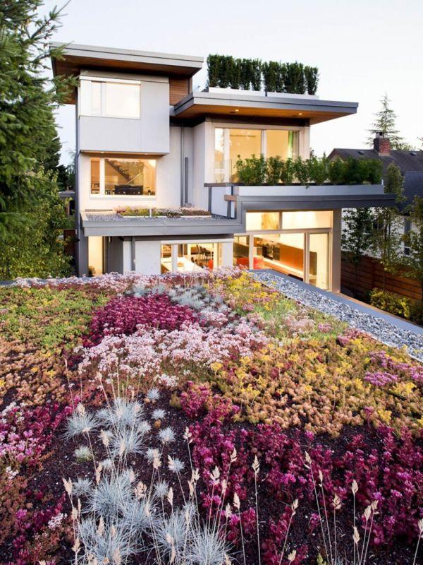 Wedo thiết kế nhà đẹp với cây xanh và hoa