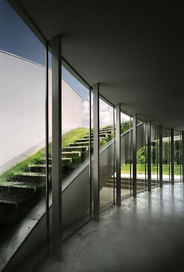 Wedo thiết kế cầu thang với cỏ