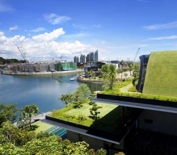 Wedo thiết kế mái nhà với cỏ và cây xanh