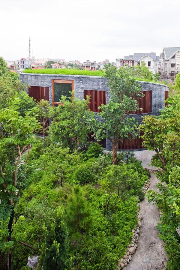 Wedo thiết kế mái nhà đẹp với cỏ và cây xanh