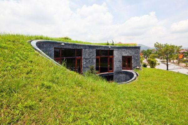 Wedo thiết kế mái nhà đẹp với cỏ xanh