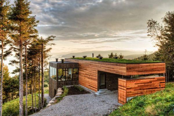 Wedo thiết kế mái nhà đẹp và ấm áp với cỏ xanh