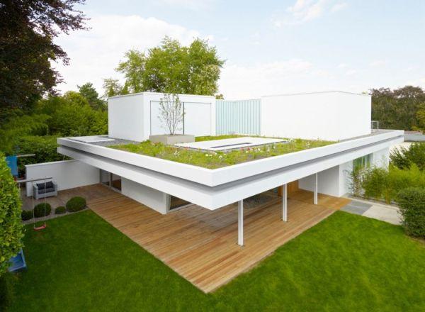 Wedo thiết kế nhà đẹp và ấm áp với cỏ, cây xanh