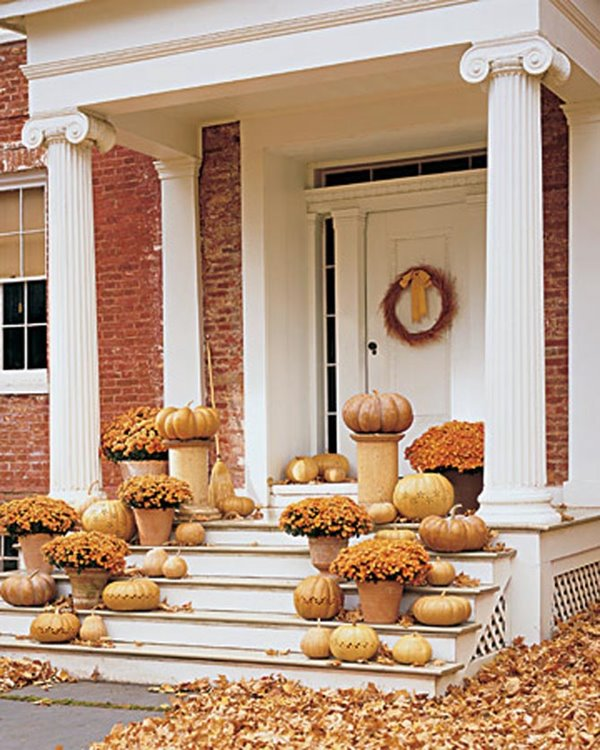 Wedo thiết kế cửa ra vào và không gian ngoại thất trước nhà đẹp, sang trọng