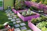 Wedo thiết kế tiểu cảnh sân vườn đơn giản và độc đáo