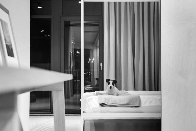 Wedo thiết kế nội thất với gạch trần đơn giản, hiện đại cho phòng ngủ đẹp